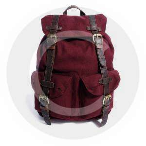 Backpack with Contrast Straps-1