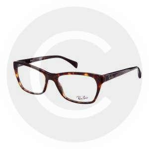 Ray- Ban Wayfarer Glasses-1